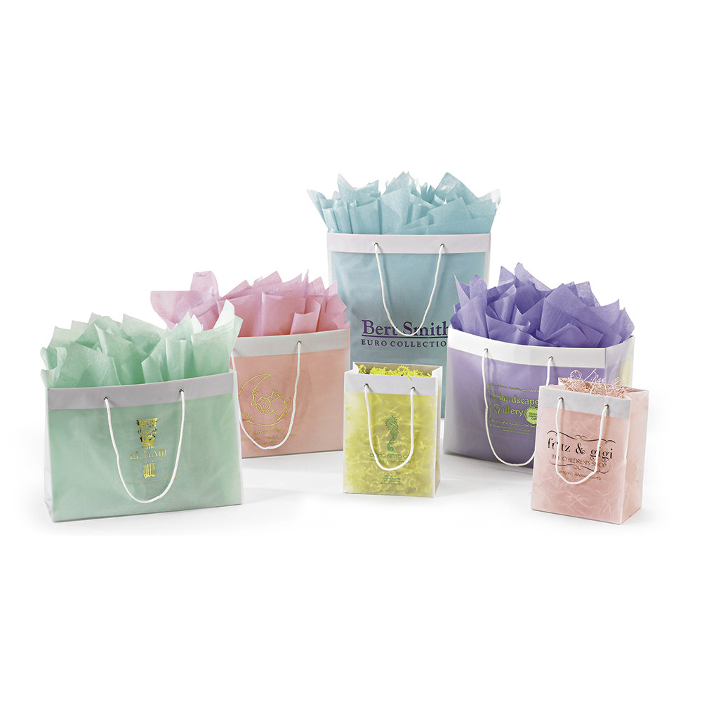 Plastic Frosted Shopping Bags With Rope Handles – Custom Bags ...